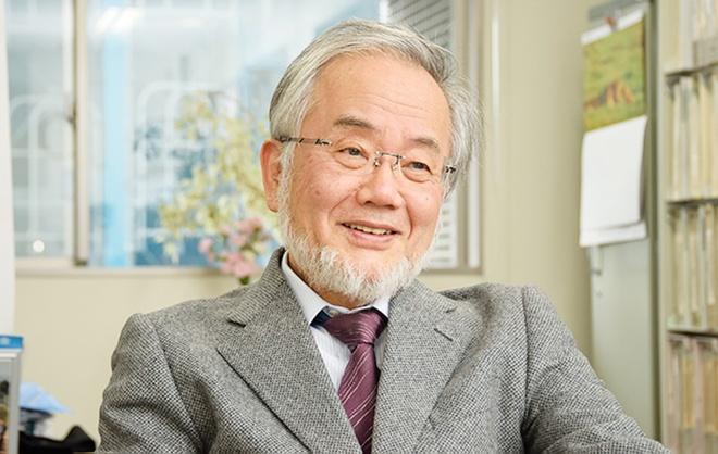 Chu nhan Nobel Y sinh 2016 day tai dai hoc hang dau Nhat Ban hinh anh 1