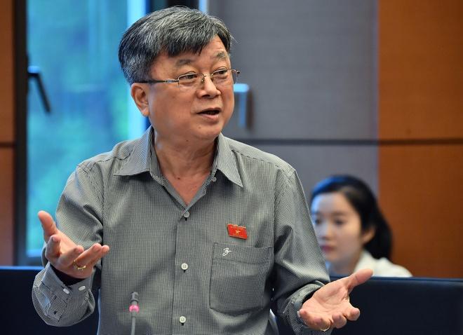 Dai bieu Quoc hoi: GS Truong Nguyen Thanh ve My gay mat niem tin hinh anh