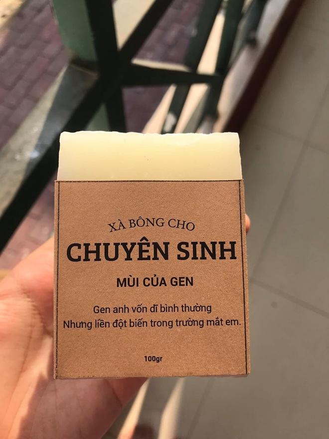 Hoc sinh truong chuyen ban xa bong gan voi tung mon hoc hinh anh 8