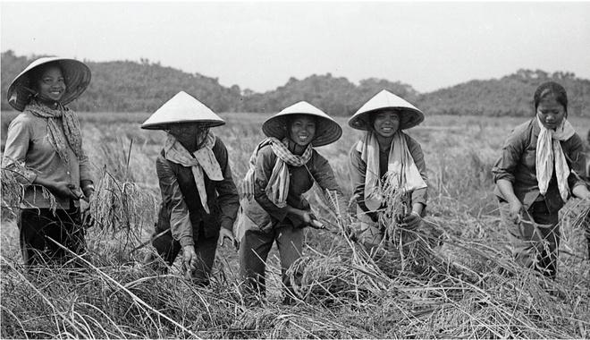 Bao tang Phu nu Viet Nam anh 1