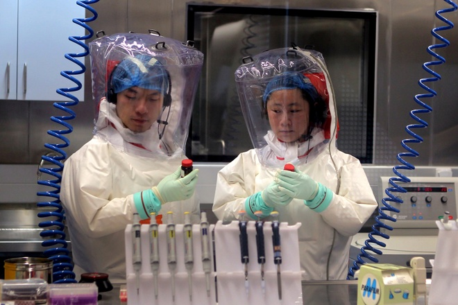 Nha khoa hoc di tim nguon goc virus corona hinh anh 1 ebola_600.jpg