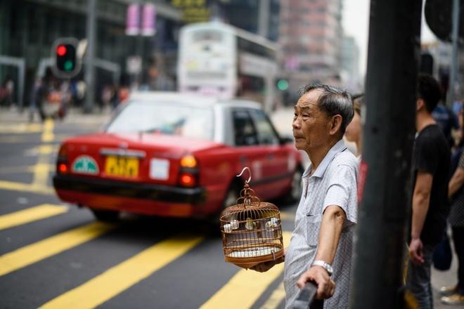 Dac khu hanh chinh Hong Kong nhung ngay truoc tuoi 20 hinh anh