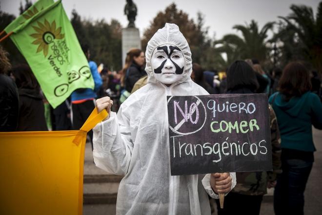 Su tro lai cua Monsanto va hiem hoa thuoc diet co tai Viet Nam hinh anh