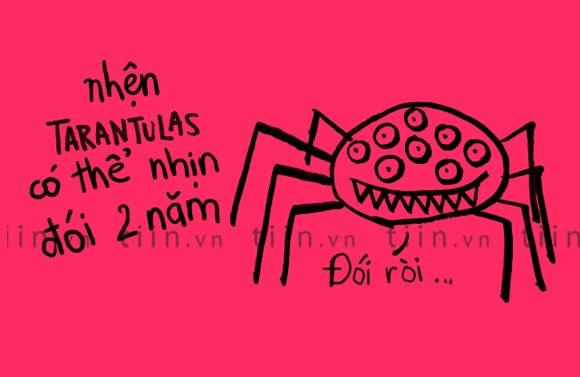 Fun facts: Nhen co the nhin doi 2 nam hinh anh