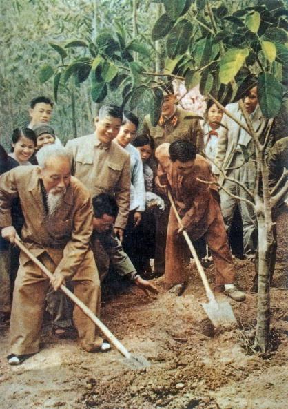 Chu tich Ho Chi Minh qua anh quoc te hinh anh 7 Chủ tịch Hồ Chí Minh cùng nhân dân trồng cây trong dịp