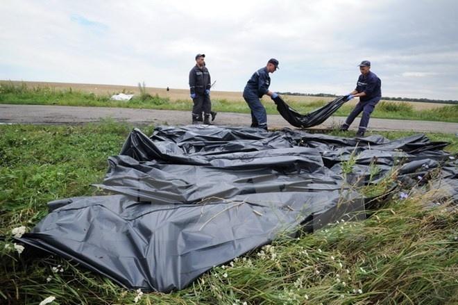 Luc luong ly khai mien Dong Ukraine cong bo tai lieu vu MH17 hinh anh