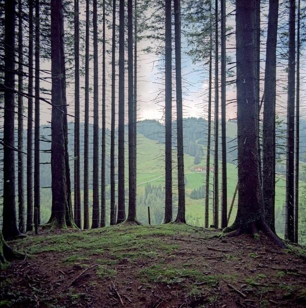 Nhung duong bien gioi ai cung co the vuot qua o chau Au hinh anh 5 Jungholz là một ngôi làng của Áo gần với biên giới Đức.