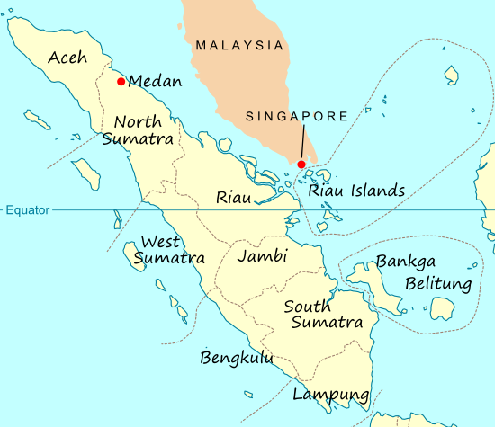 Indonesia lai danh chim 13 tau ca Viet Nam hinh anh 1