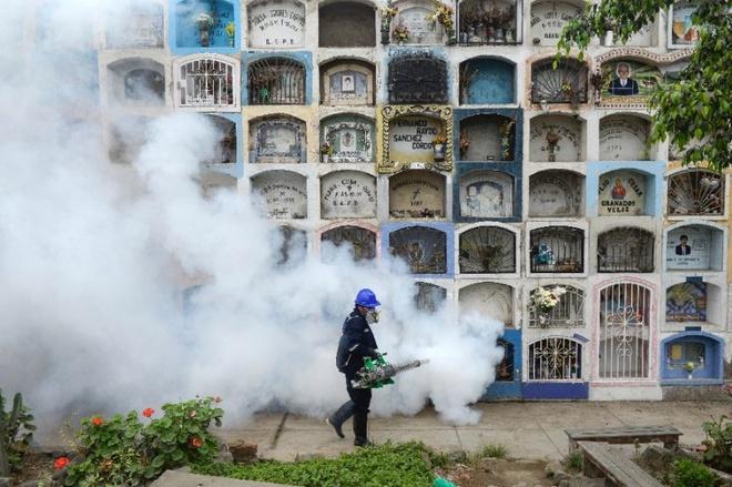Peru co ca nhiem virus Zika qua duong tinh duc dau tien hinh anh 1