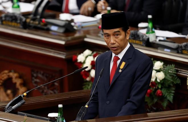 Indonesia the bao ve 'tung tac lanh tho' sau dung do voi TQ hinh anh 1