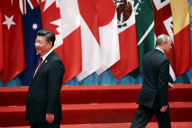Tong thong Putin tang kem cho Chu tich Trung Quoc hinh anh 1