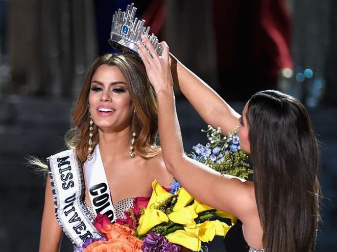 Nhung be boi cong bo nham giai thuong o Oscar, Miss Universe hinh anh