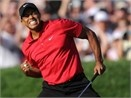 Tiger Woods vo dich U.S. Open hinh anh