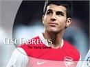 Fabregas: 'Gio khong phai luc den Madrid' hinh anh