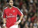 'Arsenal phai giu bang duoc Fabregas' hinh anh
