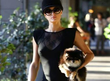 Paris Hilton 'tha rong' di shopping hinh anh