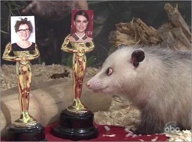 Chon mat lac du doan Oscar hinh anh