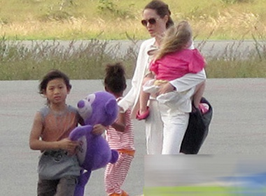 Cu dan mang ung ho Jolie-Pitt dua con ve tham que hinh anh