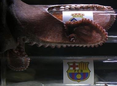 Bach tuoc Iker chon Real vao chung ket Champions League hinh anh