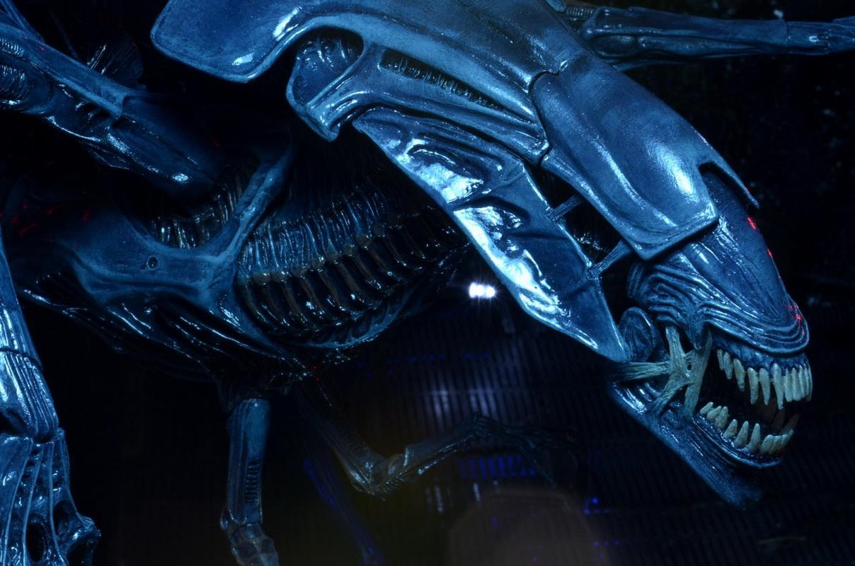 Cac hinh thuc tien hoa ghe ron cua quai vat trong 'Alien' hinh anh