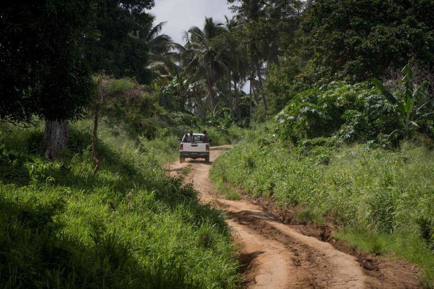 Vanuatu canh bao Covid-19 anh 1