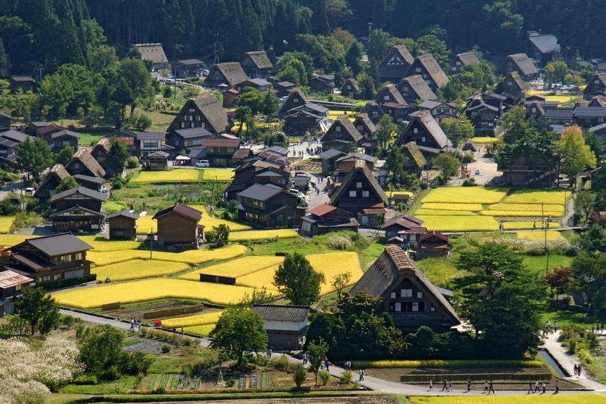 Kết quả hình ảnh cho Shirakawa-go, nơi những ngôi nhà chắp tay cầu nguyện