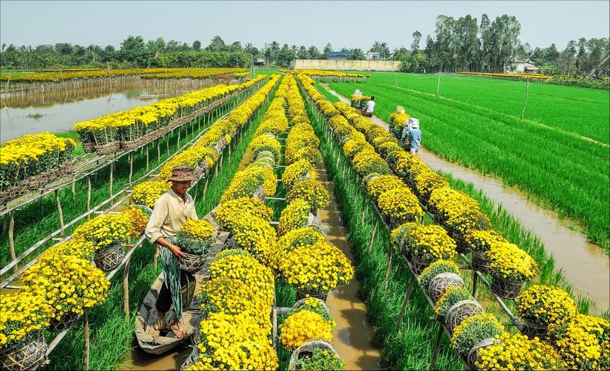 Kết quả hình ảnh cho làng hoa sa đéc