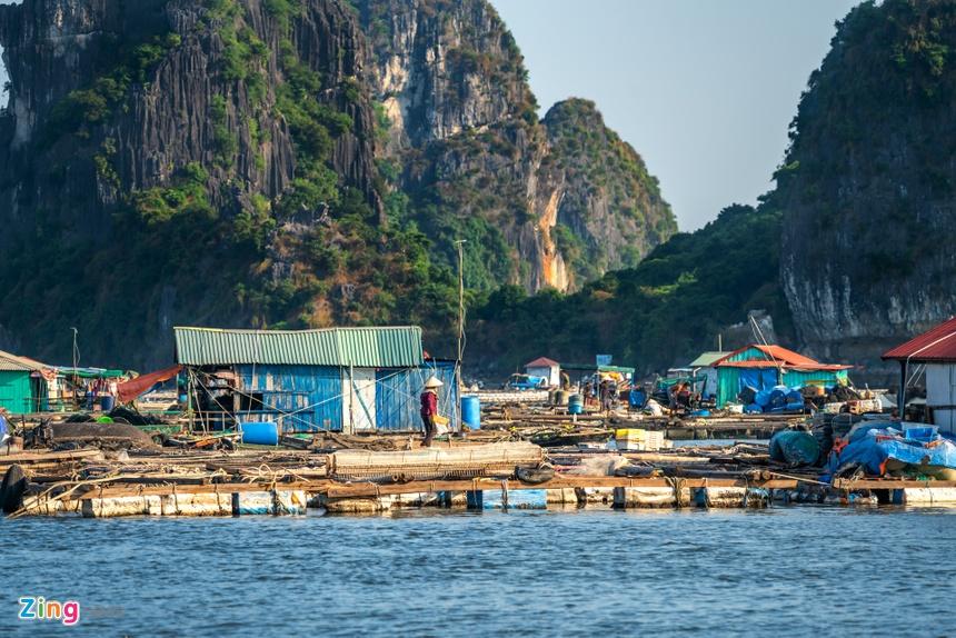 Nhung lang chai du lich o hai vinh dep nhat Quang Ninh hinh anh 31