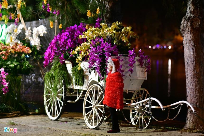 Da Lat ruc ro trong dem khai mac Festival hoa hinh anh 43 hoa_da_lat_zing20.JPG
