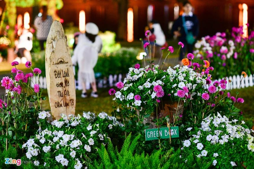 Da Lat ruc ro trong dem khai mac Festival hoa hinh anh 51 hoa_da_lat_zing27.JPG