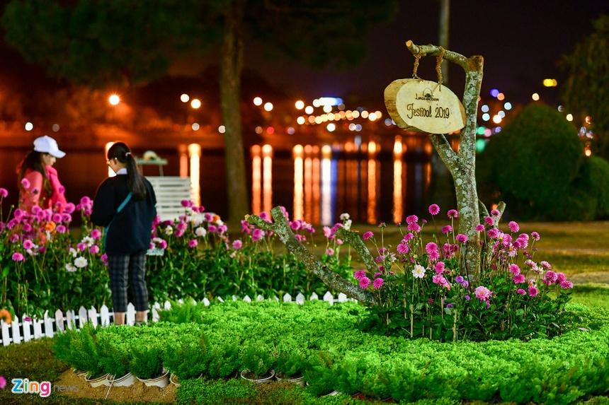 Da Lat ruc ro trong dem khai mac Festival hoa hinh anh 53 hoa_da_lat_zing29.JPG