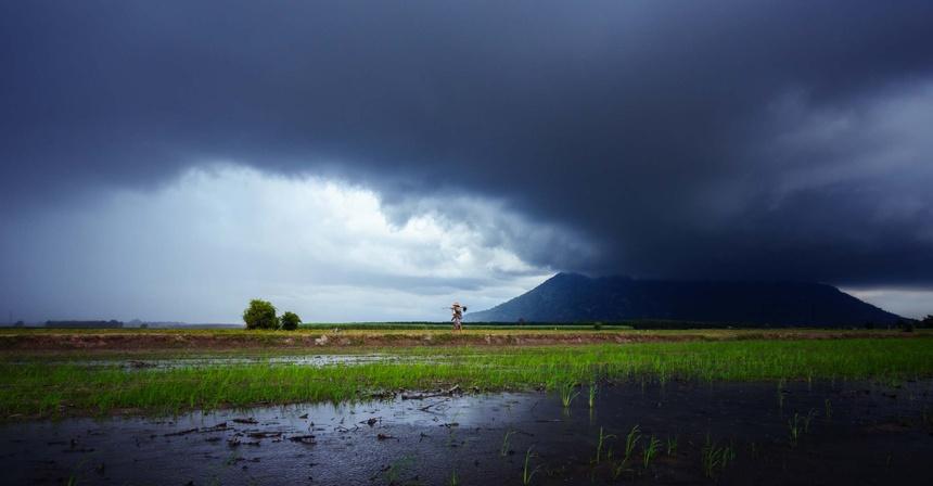 Tay Ninh - vung dat cuon hut tu ve dep binh di giua doi thuong hinh anh 10