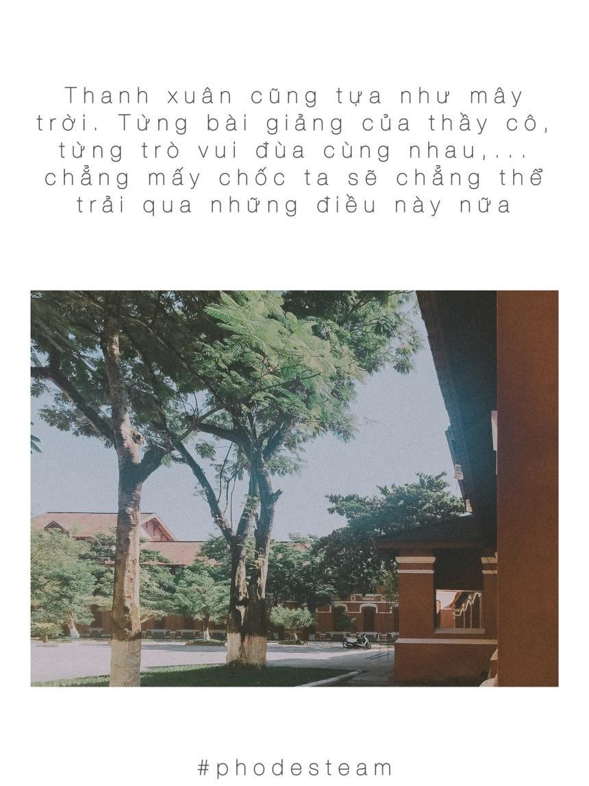 Bo Anh 'Viet Cho Thanh Xuan To Va Cau': Nhung Mua He Khong