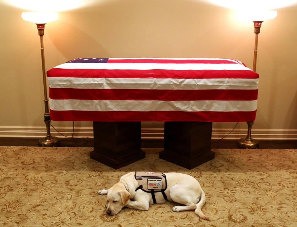 Linh cuu Bush 'cha' den Dien Capitol trong hoang hon Washington D.C hinh anh 12