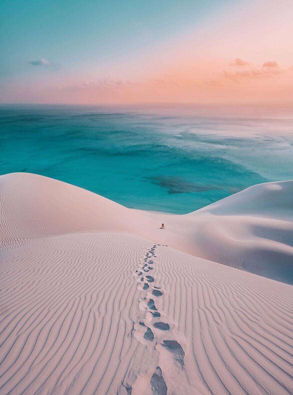 Socotra anh 7