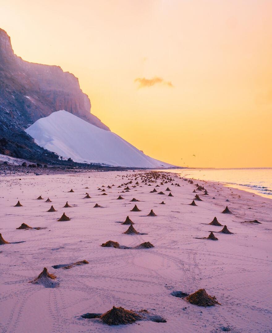 Socotra anh 8
