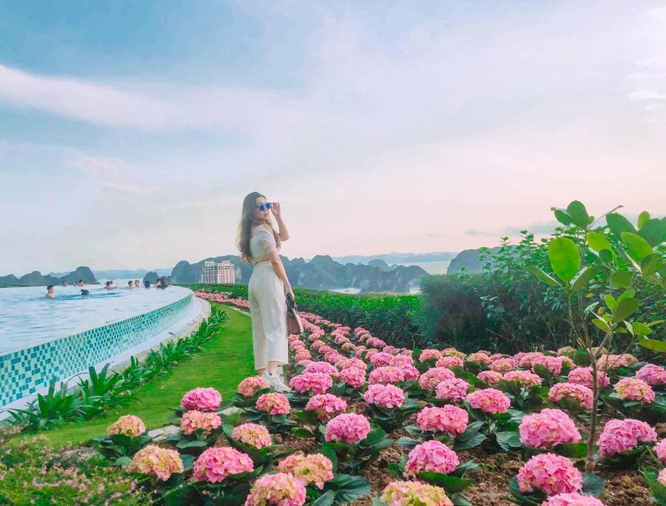 FLC Ha Long,  Quang Ninh anh 1