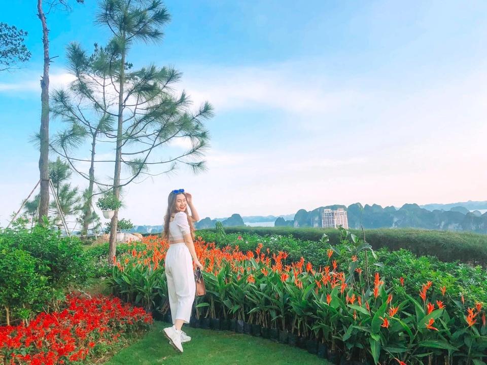 FLC Ha Long,  Quang Ninh anh 8